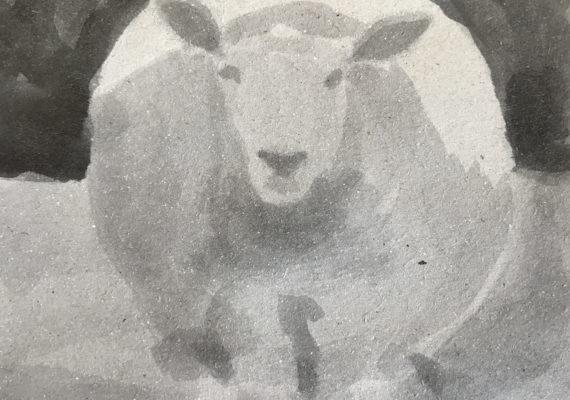 De schapen van Fer