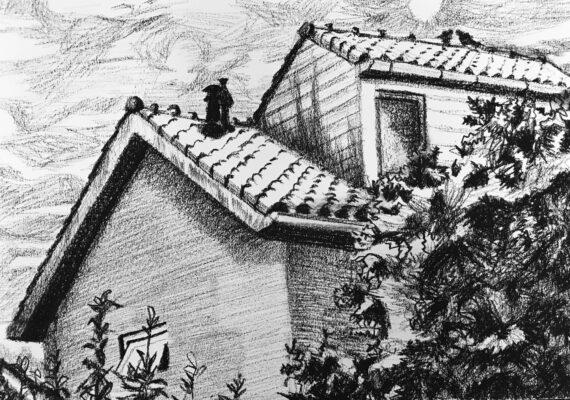 Hut op ons huisje in de Vogelbuurt